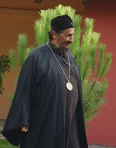 Епископ (Евтич) Афанасий
