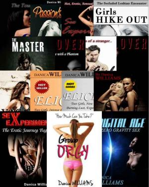 14 Erotic Stories Bundle