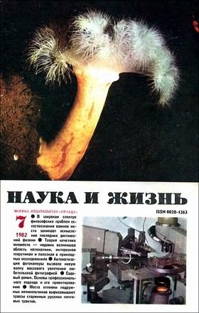 1982 №7