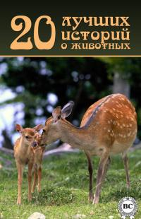 20 лучших историй о животных