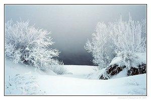 31 декабря сказка стучится во все двери                         (СИ)
