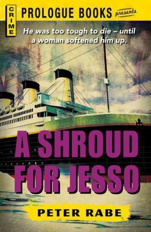 A Shroud for Jesso