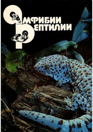 Амфибии. Рептилии