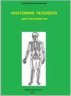 Анатомия человека для массажистов