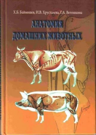 Анатомия домашних животных (остеология, синдесмология, миология)