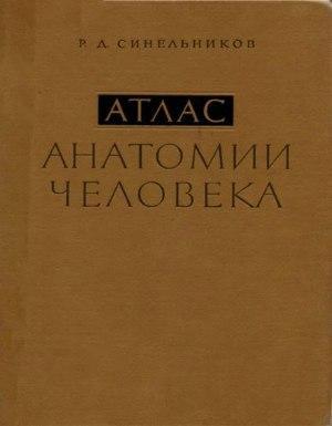 Атлас анатомии человека: Учебное пособие. Том 2