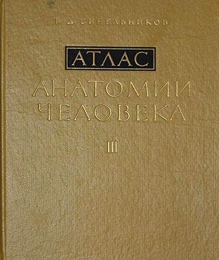 Атлас анатомии человека в 3-х томах Р.Д.Синельникова [том 3-тий]