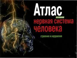 Атлас. Нервная система человека. Строение и нарушения.
