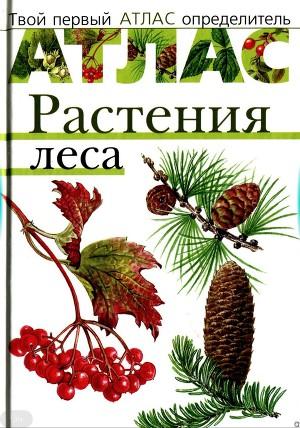 Атлас. Растения леса