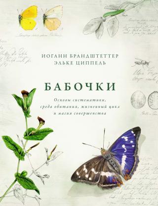 Бабочки. Основы систематики, среда обитания, жизненный цикл и магия совершенства [litres]