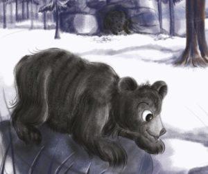 Bhabhloo Bear's Adventure