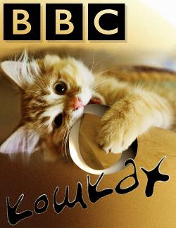 Би-Би-Си о кошках (сборник)