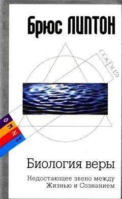 Биология веры: Недостающее звено между Жизнью и Сознанием