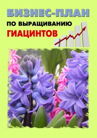 Бизнес-план по выращиванию гиацинтов