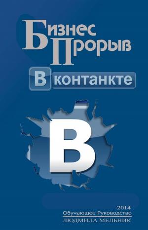 Бизнес прорыв ВКонтакте (СИ)