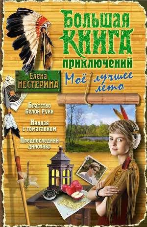 Большая книга приключений. Мое лучшее лето (сборник)