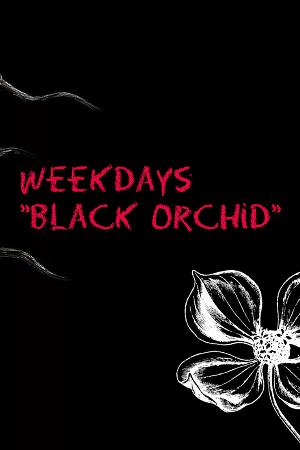 Будни «Чёрной орхидеи» (СИ)
