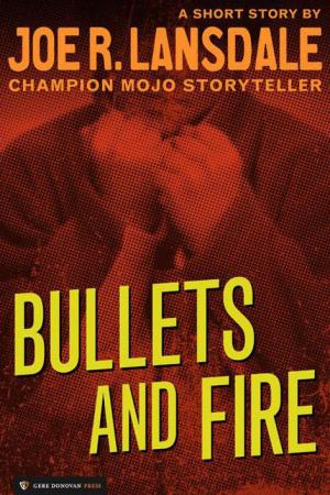 Bullets and Fire [Short Story]