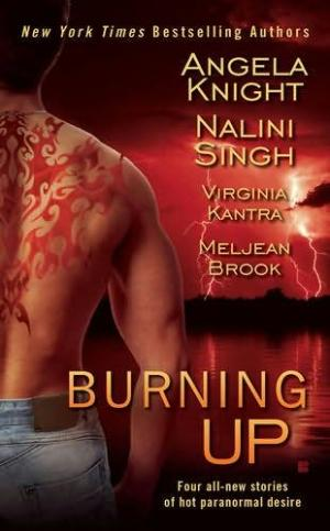 Burning Up [Omnibus of novels]