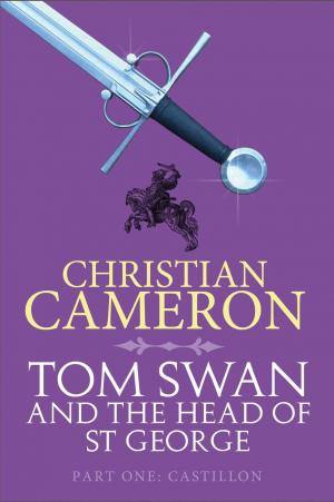 Castillon: Tom Swan and the Head of St George Part One