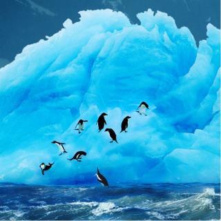 Чарующие айсберги Антарктиды