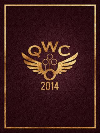 Чемпионат мира по квиддичу 2014