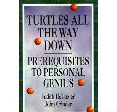 Черепахи до самого низа. Предпосылки личной гениальности