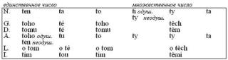Чешский язык. Учебное пособие по грамматике чешского языка