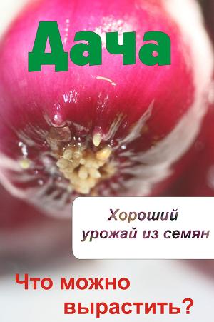 Что можно вырастить? Хороший урожай из семян