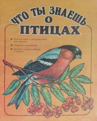 Что ты знаешь о птицах