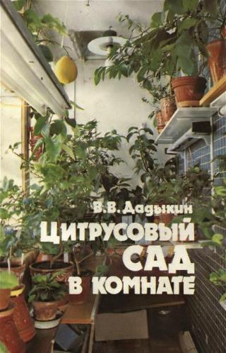Цитрусовый сад в комнате