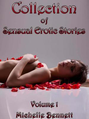 Collection of Sensual Erotic Stories – Volume 1