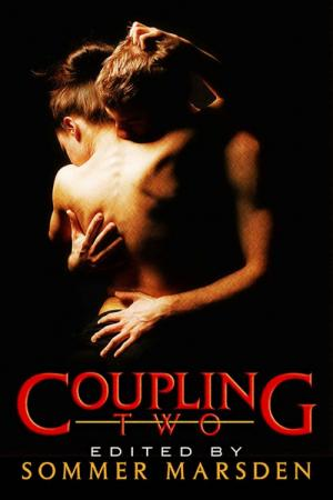Coupling Two .More Filthy Erotica for Couples