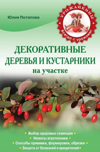 Декоративные деревья и кустарники на участке