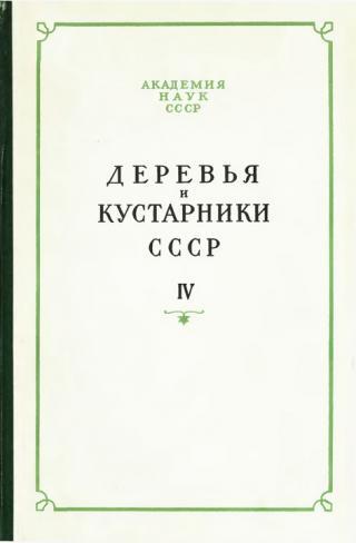 Деревья и кустарники СССР. Дикорастущие, культивируемые и перспективные для интродукции. IV