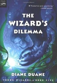 Дилемма волшебника