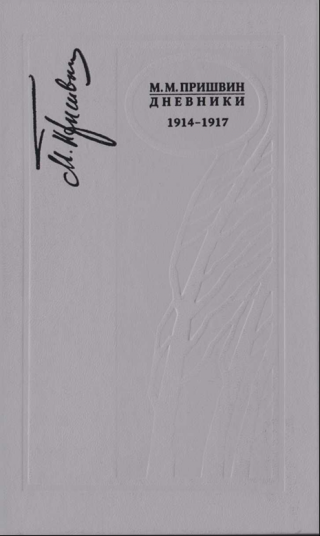 Дневники 1914