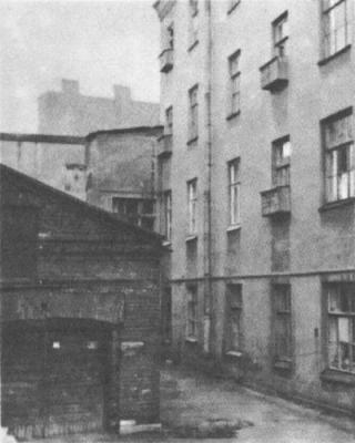 Дом на Ждановской и дача на Крестовском