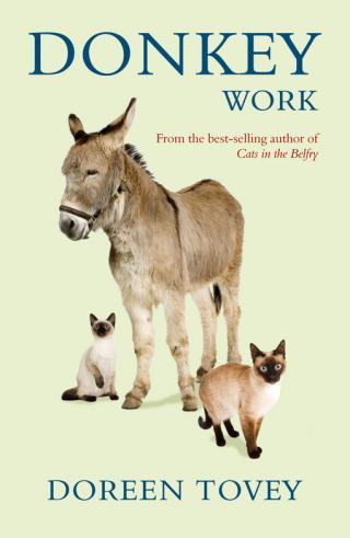 Donkey Work