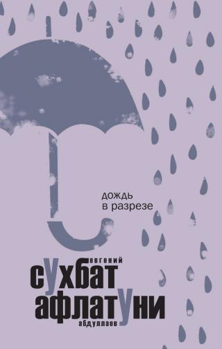 Дождь в разрезе [сборник эссе]