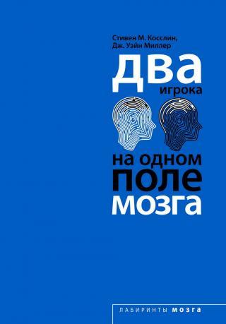 Два игрока на одном поле мозга [Top Brain, Bottom Brain: Surprising Insights into How You Think]