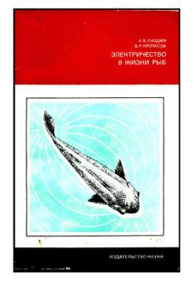 Электричество в жизни рыб