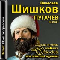 Емельян Пугачев. Книга 1