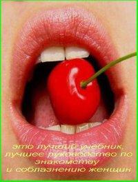 Энциклопедия пикапа. Версия 12.0