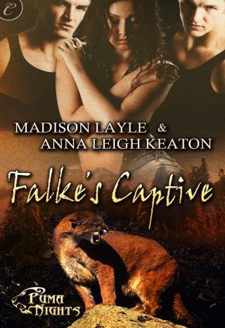 Falke's Captive