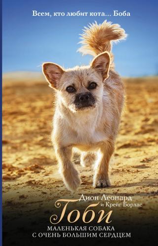 Гоби – маленькая собака с очень большим сердцем