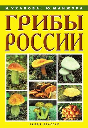 Грибы России