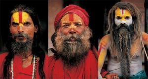Himalaya (2004)