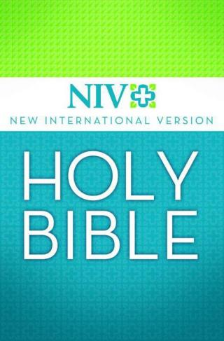 Holy Bible: New International Version (NIV)