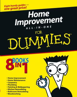 Home Improvement All-in-One For Dummies®